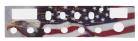 CARATULA P/RADIO COBRA 148 GTL, USA